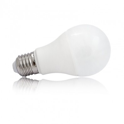 Ampoule LED 10 Watt Bulb E27 Blisterx2